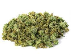 CBD Gras der Sorte Small Buds Mix