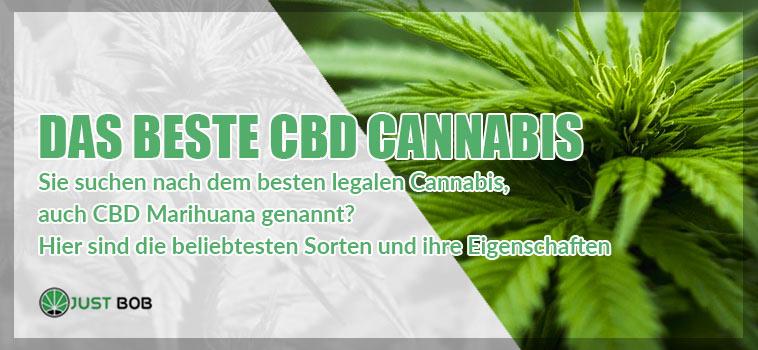 Das beste CBD Cannabis Blüte online