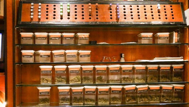 Warum sollte man CBD-Cannabis konsumieren: die positiven Auswirkungen