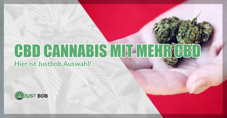 CBD-Cannabis mit mehr CBD: Justbobs Auswahl