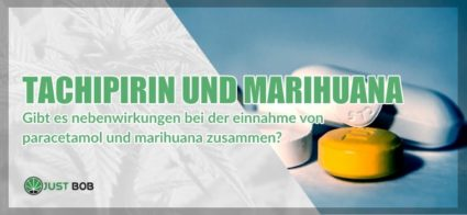 Paracetamol und Marihuana: Kann man sie gleichzeitig einnehmen?