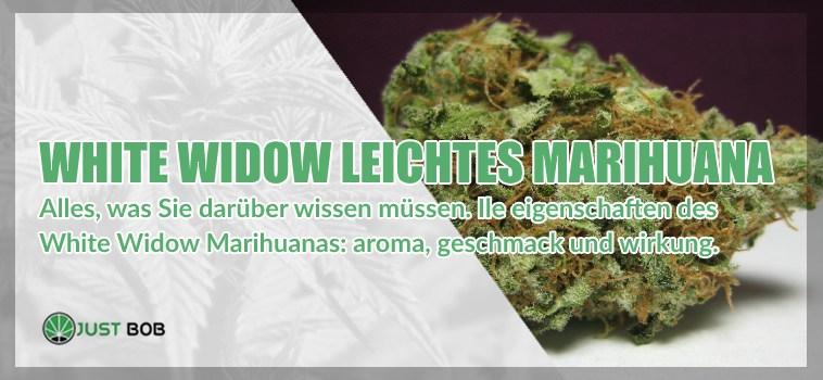 White Widow Marihuana: Information