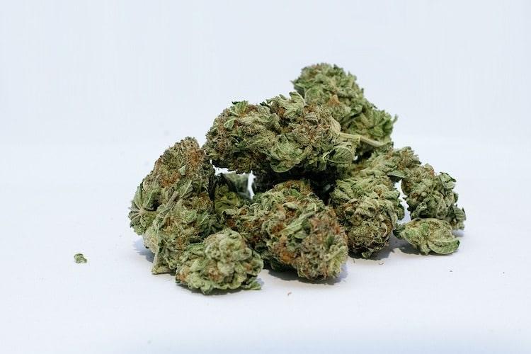 Was sind die besten Arten von Cannabis