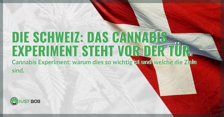 Das Cannabis Experiment steht vor der Tür