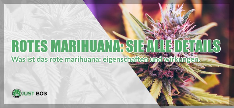 Rotes Marihuana : sie alle details