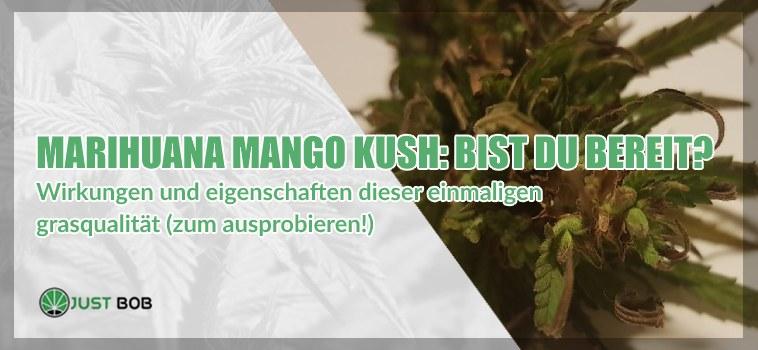 Marihuana Mango Kush: Bist du bereit dafür?