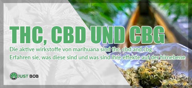 Wirkstoffe von Marihuana: THC, CBD und CBG